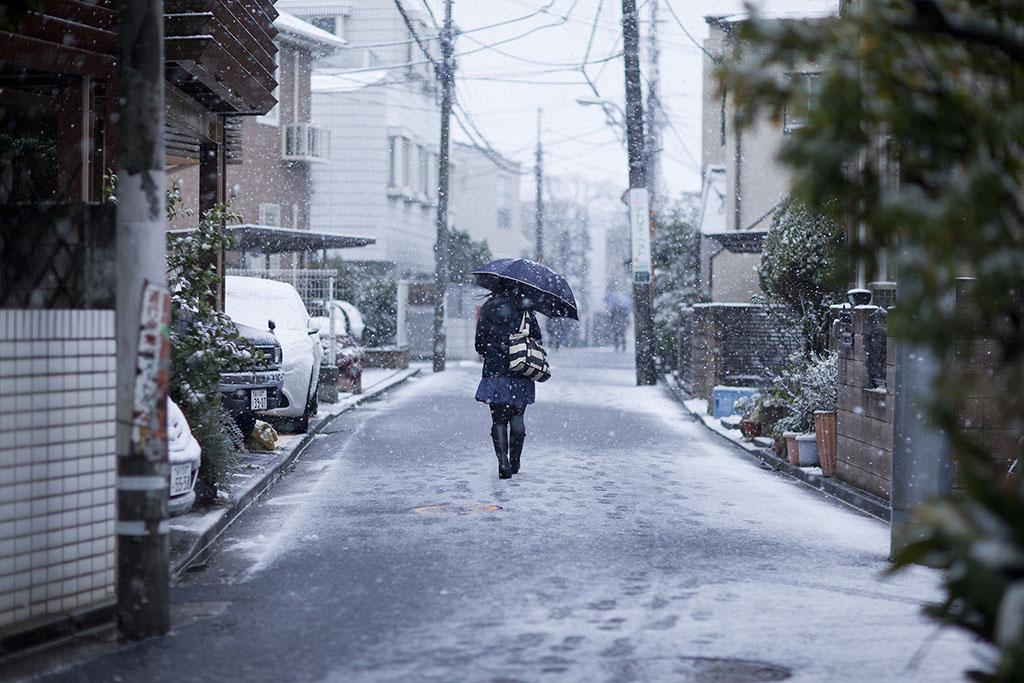 Tokyo Snow Day. de Linton