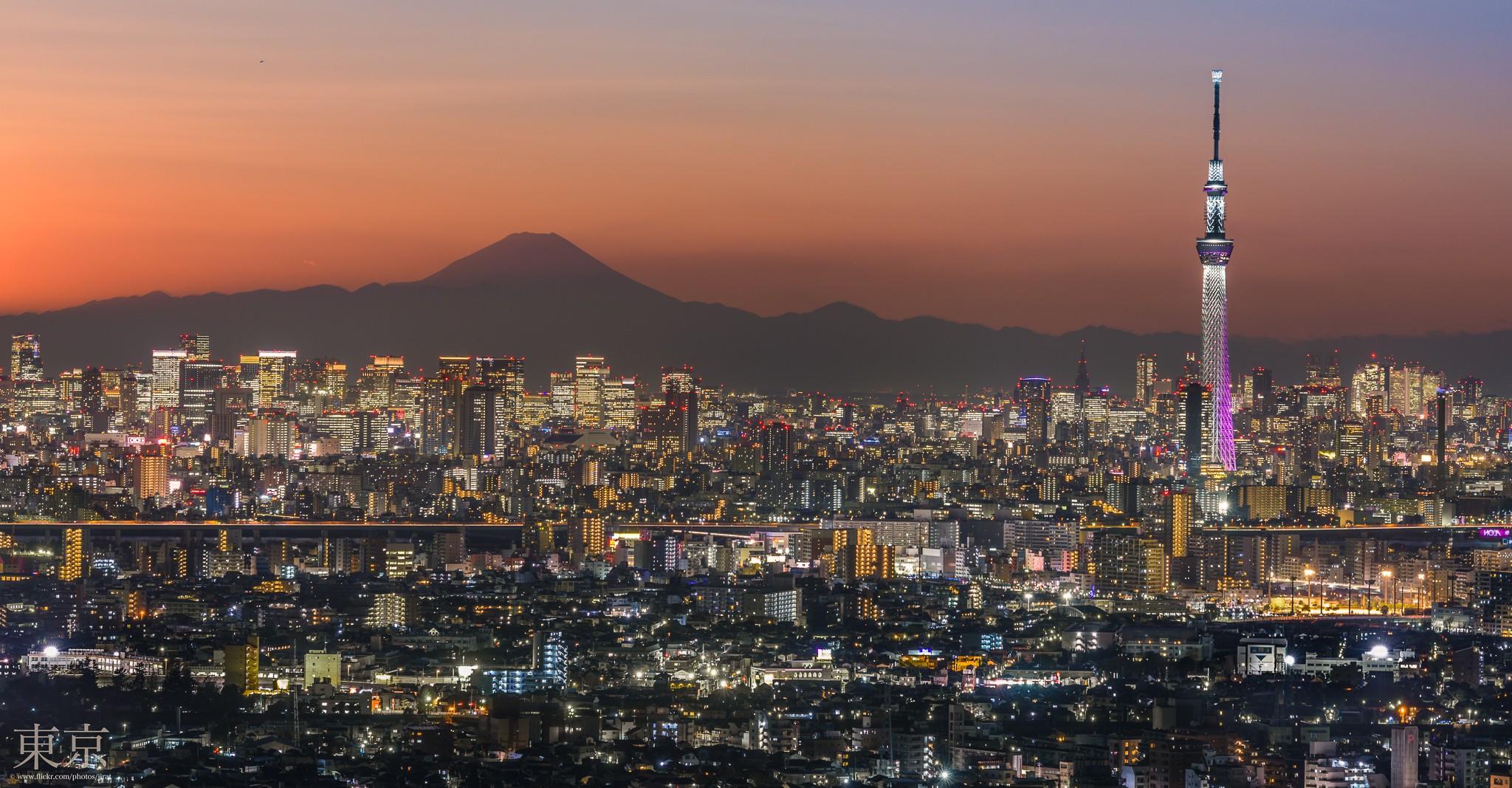 Mt.Fuji and Tokyo Metropolis