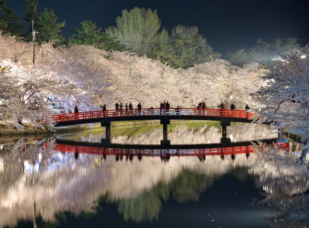 Japonism. Foto de Sho Shibata