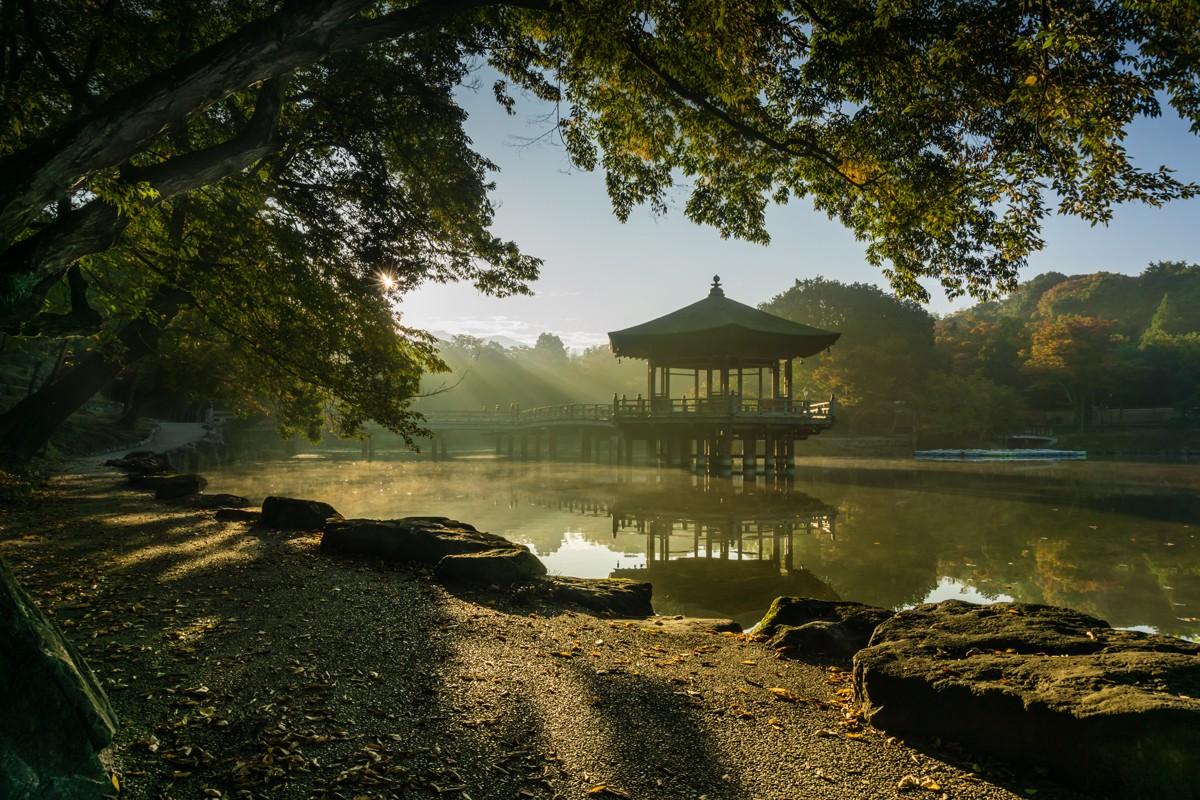 Autumn Morning. Foto de ScottSimPhotography