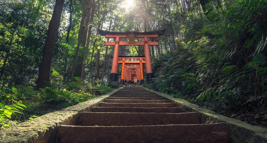 Stairway to Heaven. Foto de Bram Cornejo