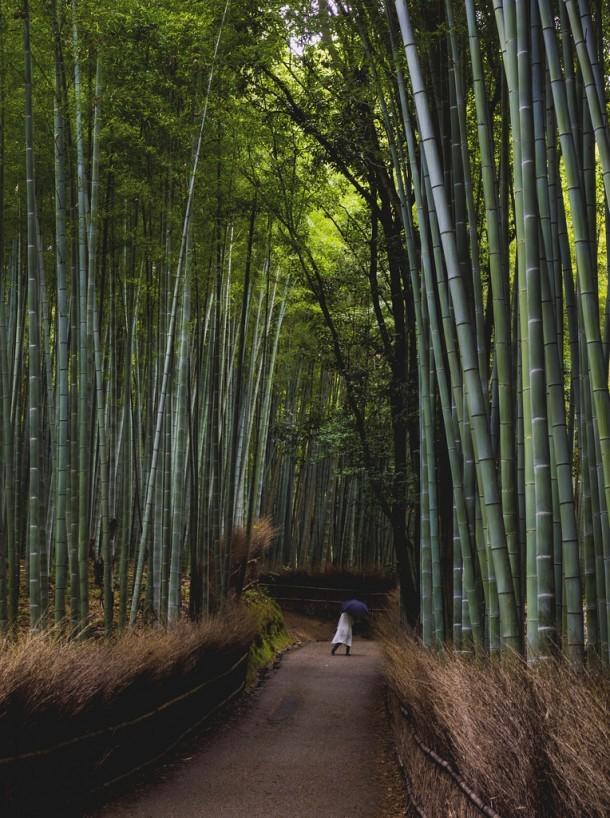 Arashiyama. Foto de Benjamin Lim