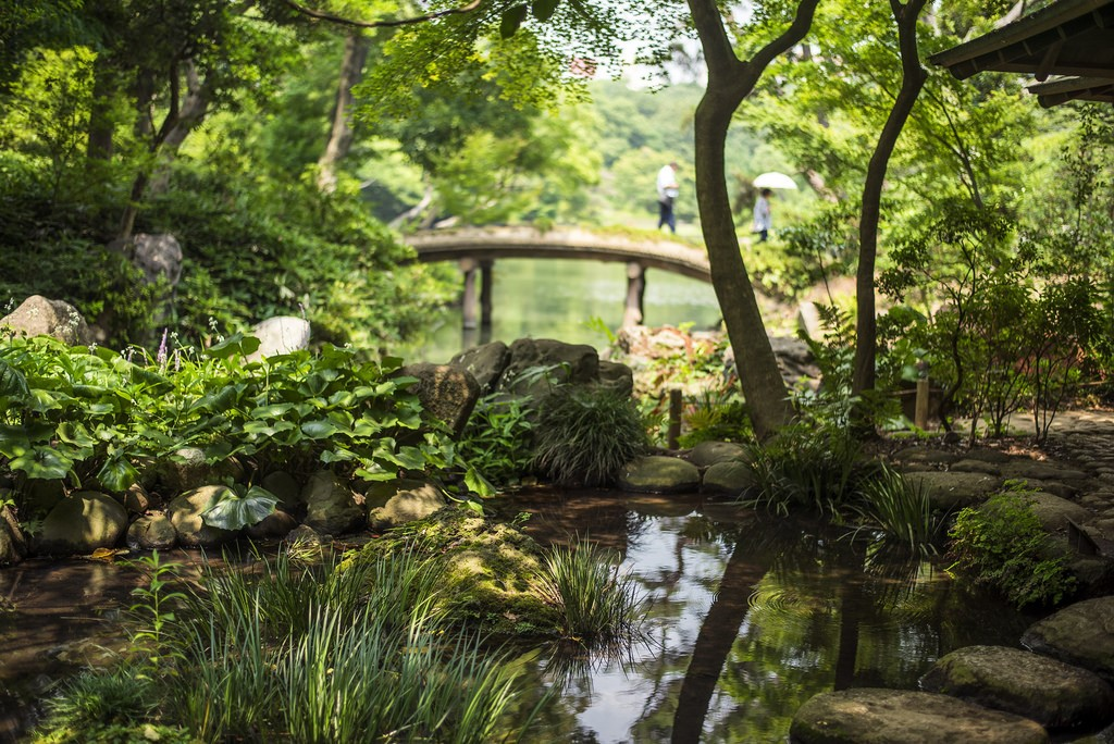 Rikugien garden. Foto de Odigo Travel