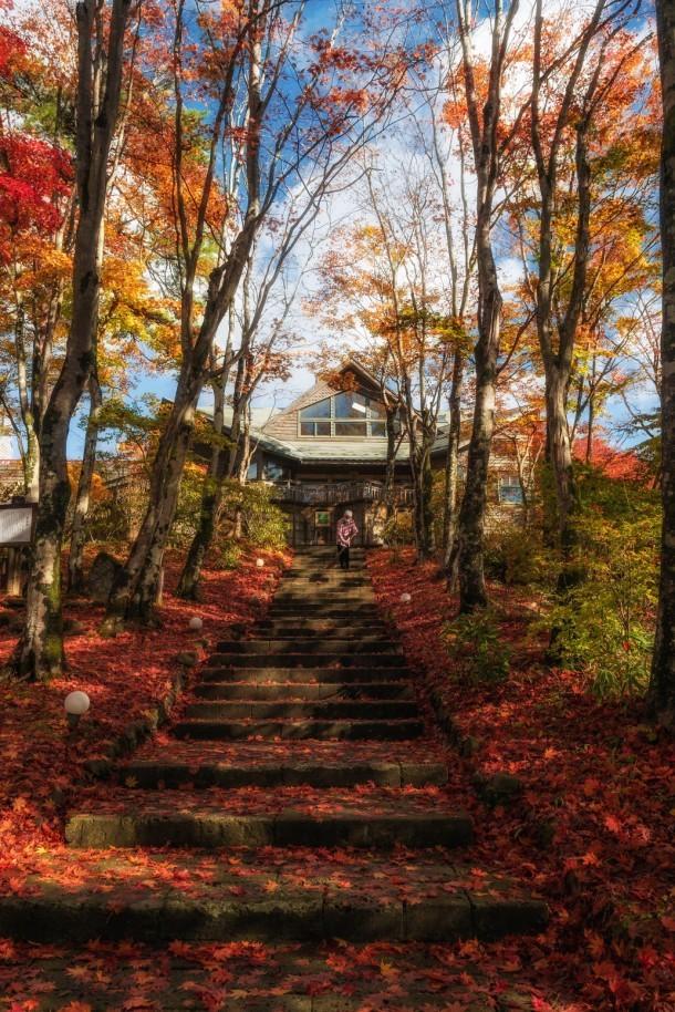 山のレストラン. Foto de mkadomura