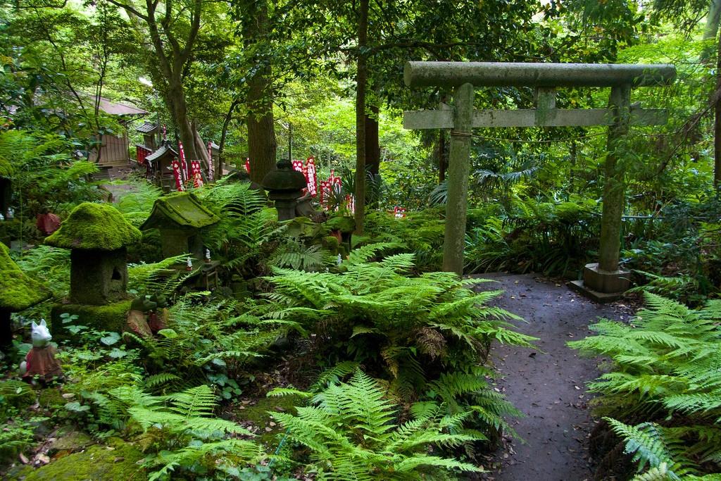 Templo Sasuke Inari. Foto de Patrick