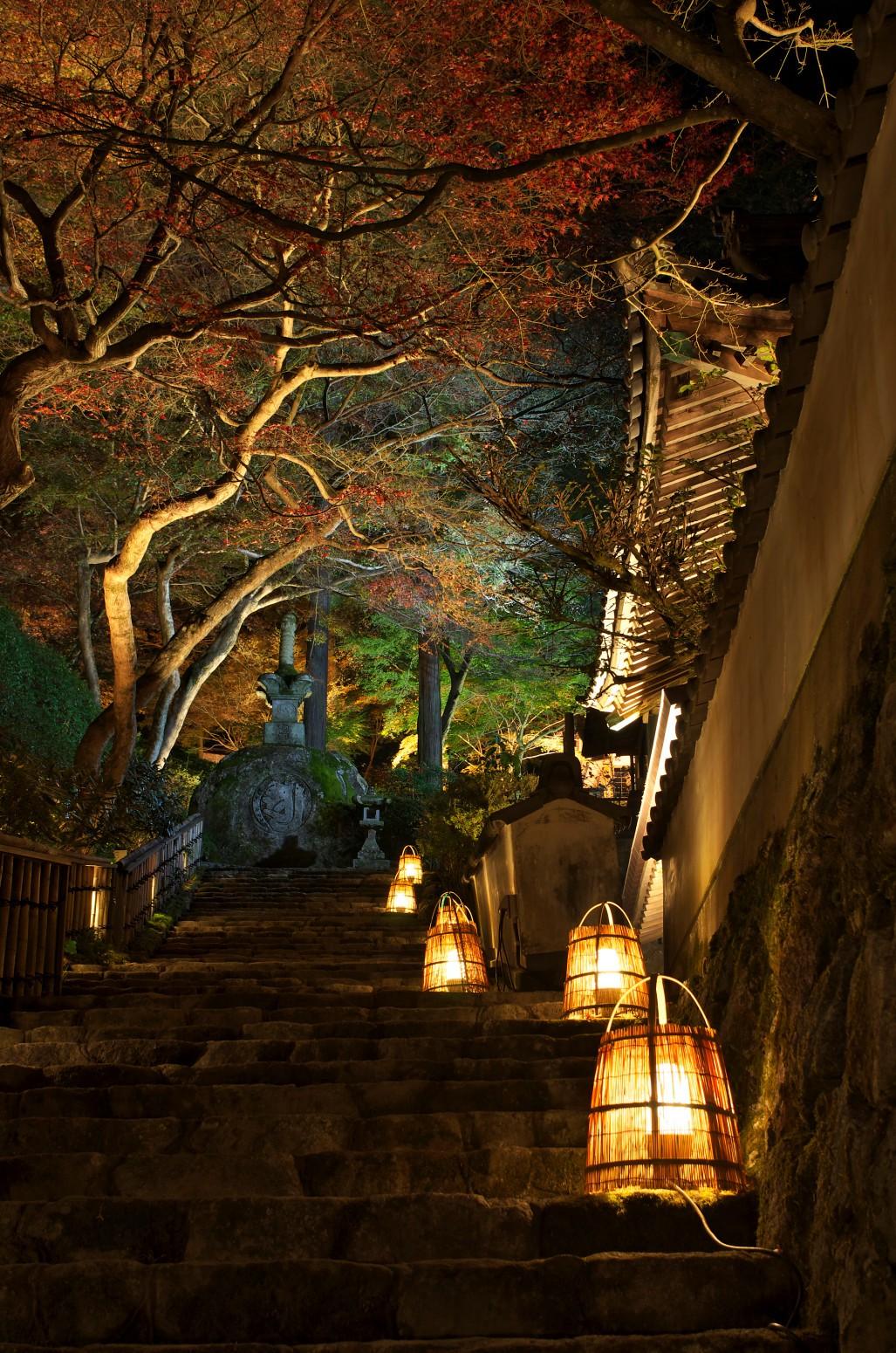 灯. Foto de yamaguchi