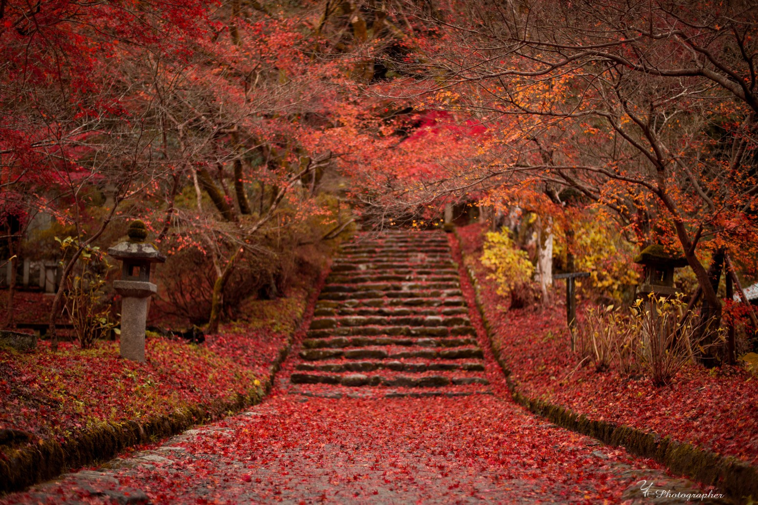 秋月城跡. Foto de kazuhiro.yamasaki