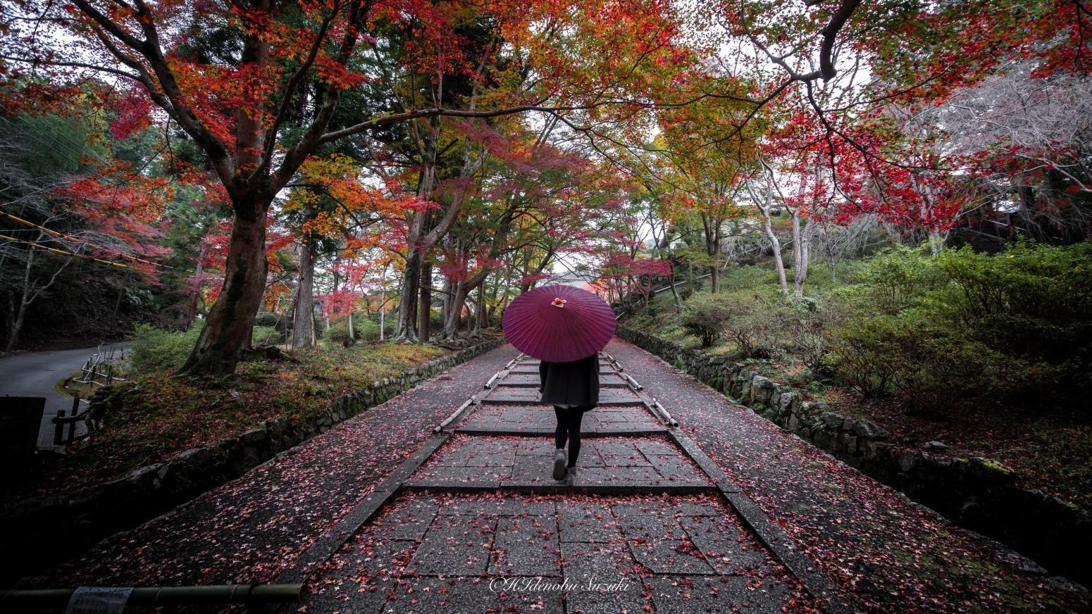2015年 今年の彩. Foto de hidenobu.suzuki