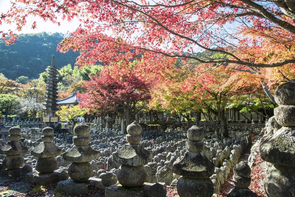 Adashino Nenbutsuji in Autumn. Foto de PV9007 Photography