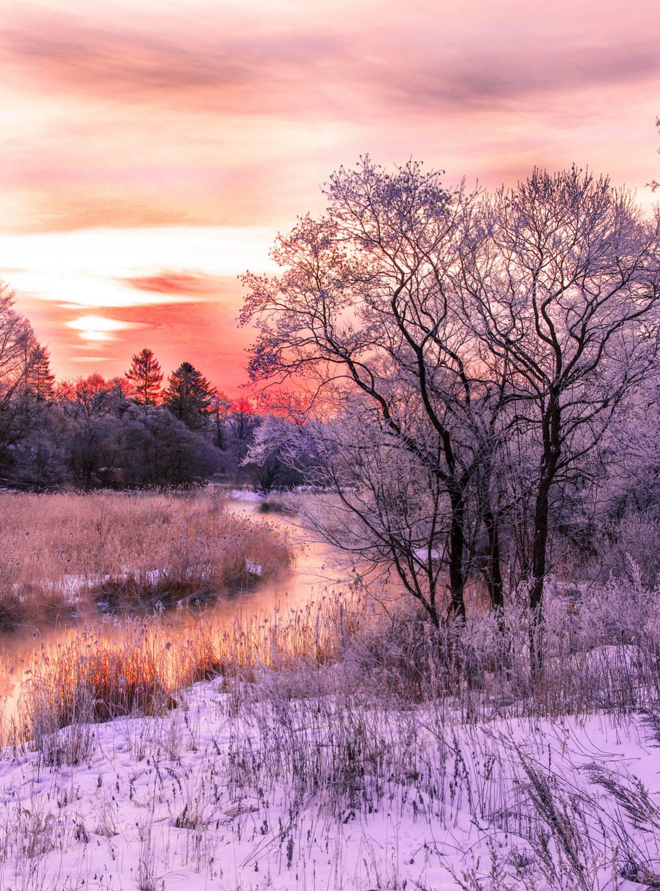 Winter scenary. Foto de Yoshihiro Kouno