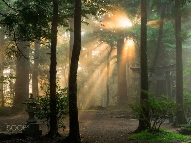 Holy Light Foto de Chieko Ishikawa.
