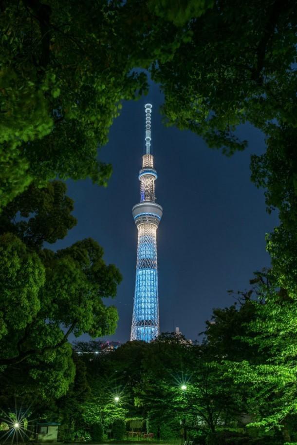 緑の額縁. Foto de Hiiro Iida