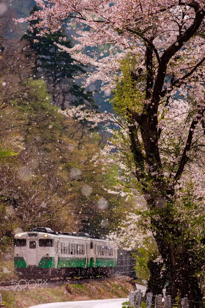 Storm in Spring. Foto de Jun Imaizumi