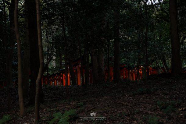Los Torii del templo Fushimi Inari Taisha