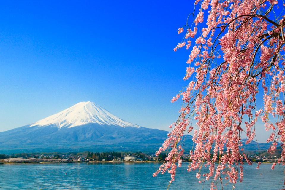 Foto de hayashiyasunari