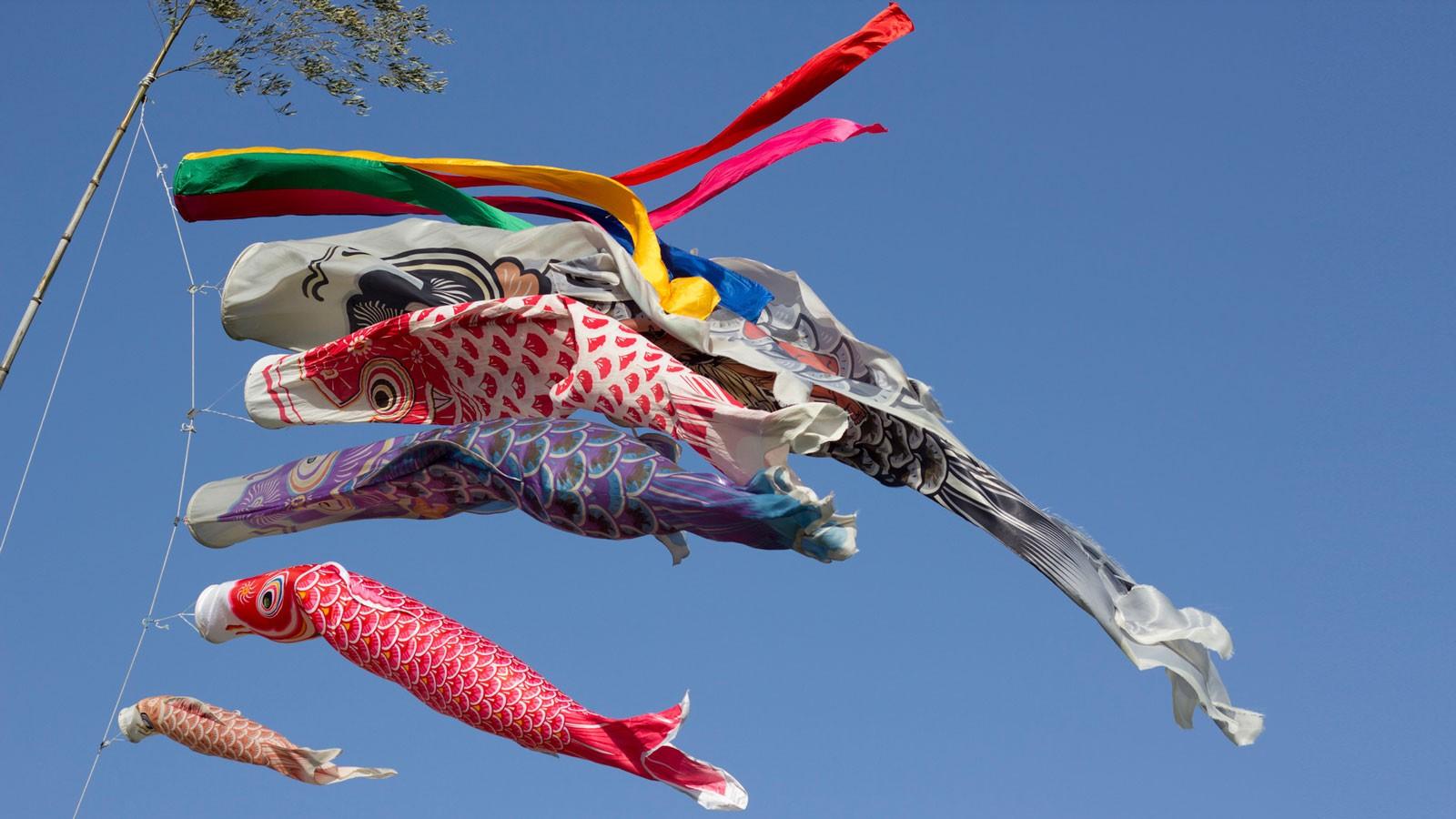 Koi no Bori. Foto de Japanexperterna.se