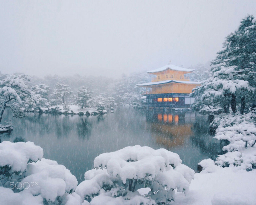Fresh snow on the Golden Pavilion. Foto de Jackie Moani