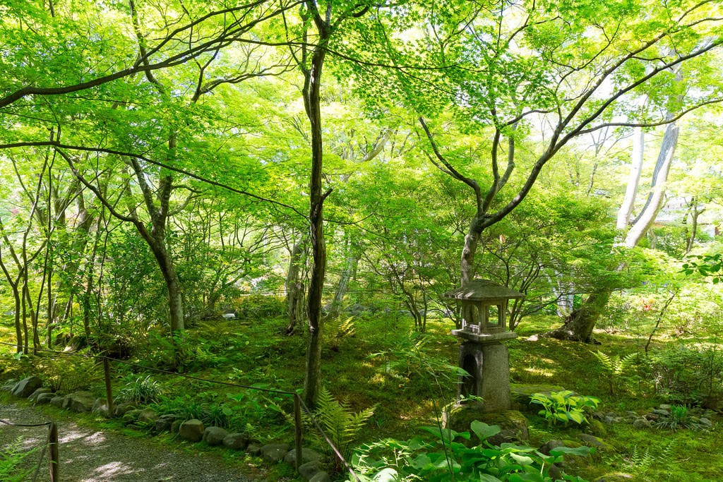 Houkyou-in Temple. Foto de Yuya Horikawa