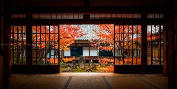The beauty inside. Foto de Ark Tui
