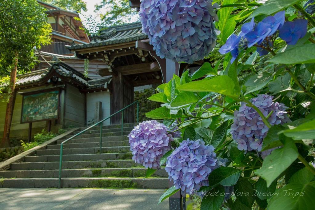 Chōraku-ji. Foto de KyotoDreamsTrips