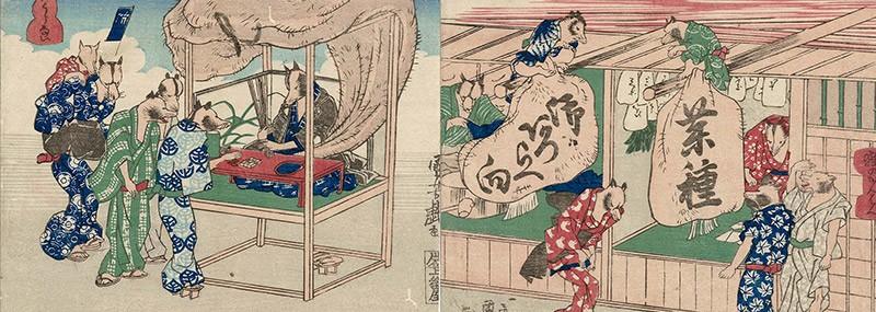 Tanuki: el yokai de los testículos gigantes